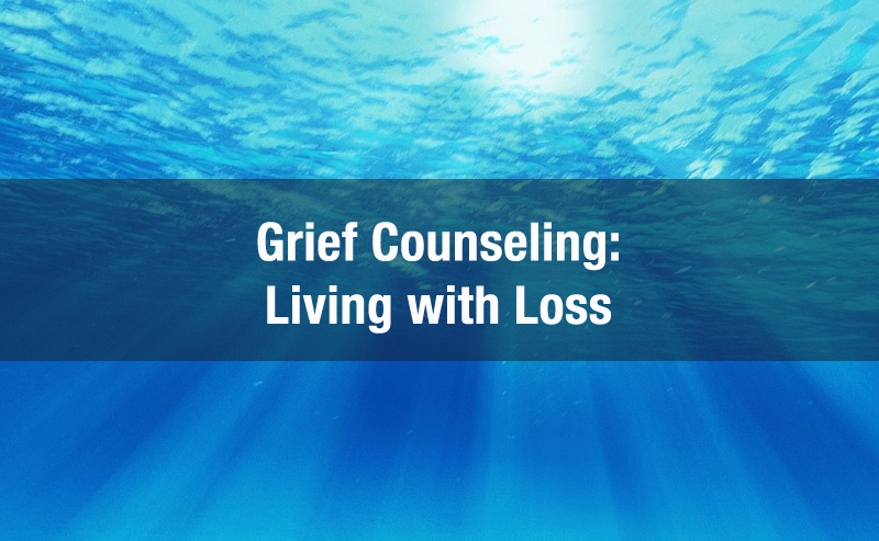 Counseling by Psychologists & Psychiatrists in Michigan